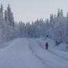 skilanglauf_trainingslager_2009_vuokatti_finnland_1011_20100124