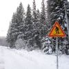 skilanglauf_trainingslager_2009_vuokatti_finnland_1018_20100124