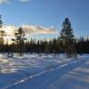 skilanglauf_trainingslager_hemsedal_2008_1059_20100117