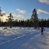 skilanglauf_trainingslager_hemsedal_2008_1062_20100117