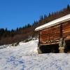 skilanglauf_trainingslager_hemsedal_2008_1079_20100117