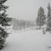 skilanglauf_trainingslager_hemsedal_2006_1005_20100124