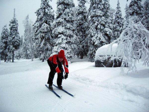 Abfahrtshocke Skilanglauf
