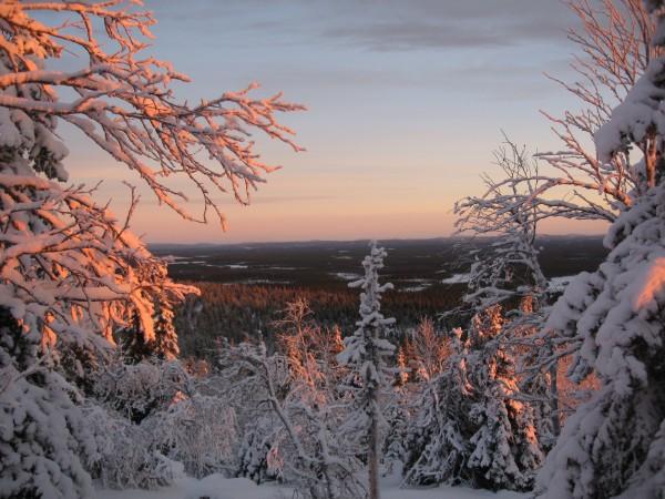 Winter Panorama Valtavaara Kuusamo